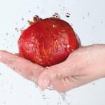 ¿Por qué el Certificado de Manipulador de Alimentos?