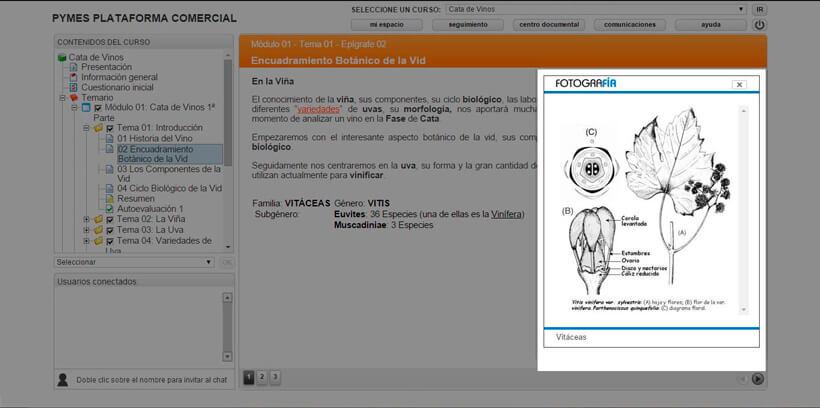 CATA DE VINOS - Pymes Plataforma Comercial