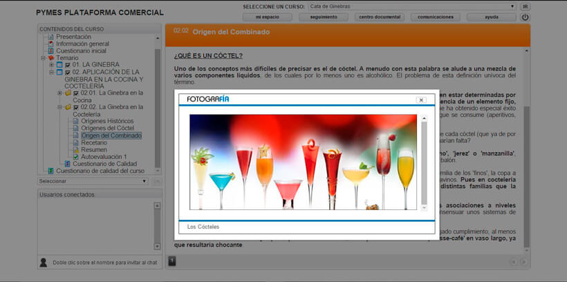 CATA DE GINEBRAS - Pymes Plataforma Comercial