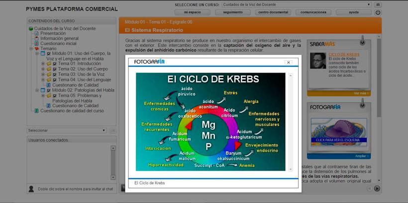 CUIDADOS DE LA VOZ DEL DOCENTE - Pymes Plataforma Comercial